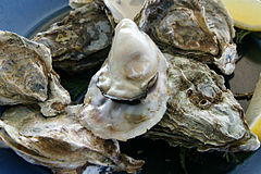 oysters for your health