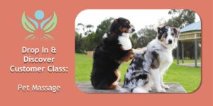 Pet Massage demo and class